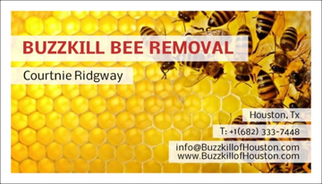 Tags bee removal  bee ...